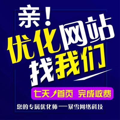 企业网站baidu收录快照更新排名SEO搜狗360关键词快速优化上首页